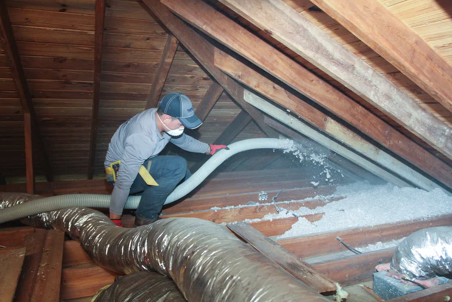 Tempco pest control team restoring an attic.