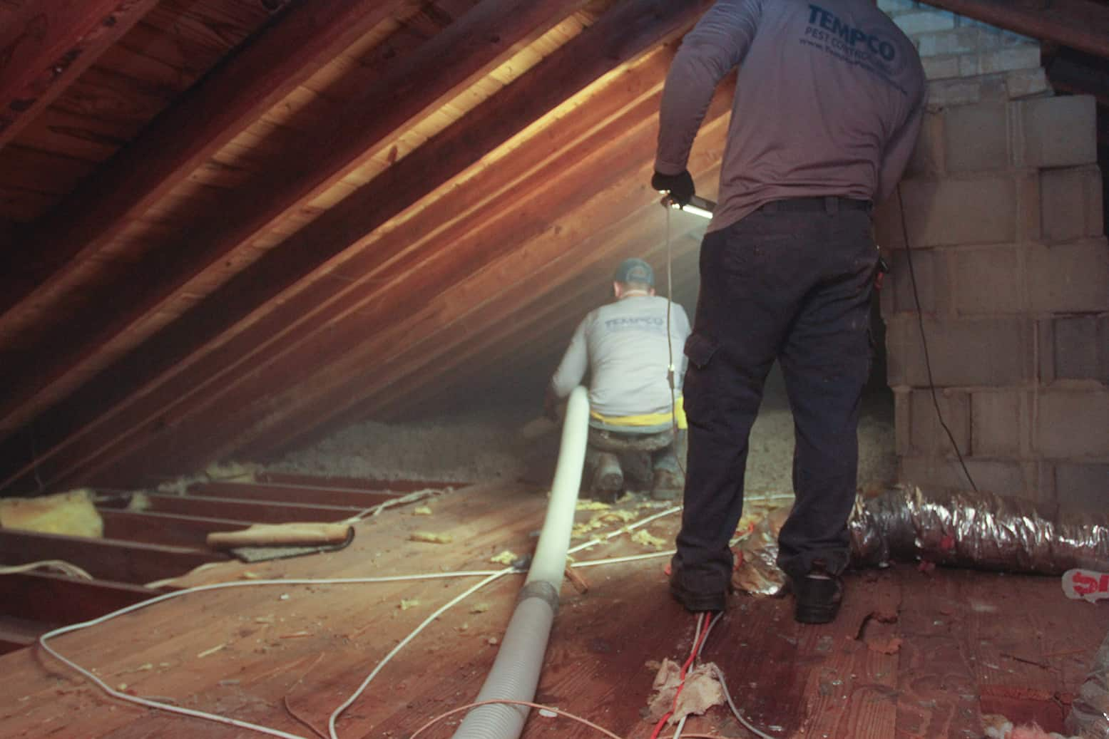 Tempco Pest Control Team started attic restoration with a large white hose.