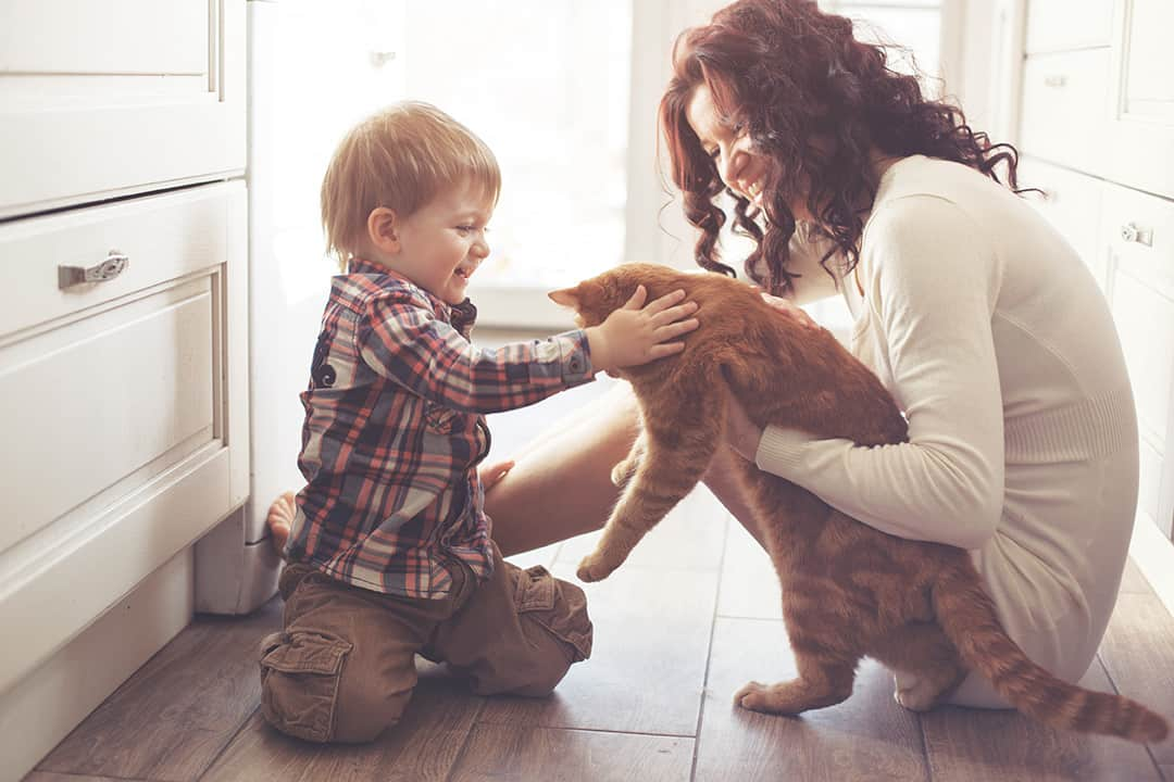 Mom and son playing with their pet cat.