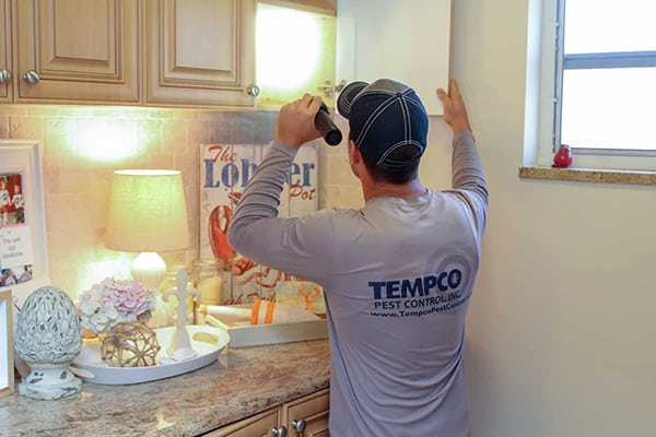 First-time-Tempco-Pest-Control-customers